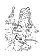 Il re leone da colorare 188