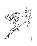Uccello da colorare 215