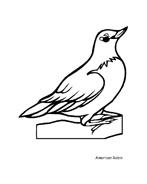 Uccello da colorare 216