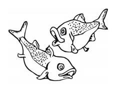 Pesce da colorare 231