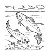 Pesce da colorare 232