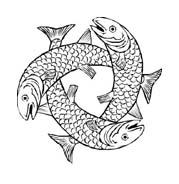 Pesce da colorare 233