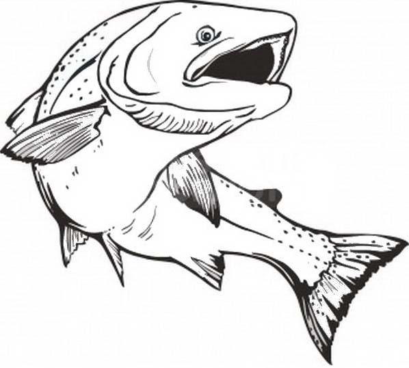 Pesce da colorare 234