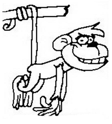 Scimmia da colorare 27