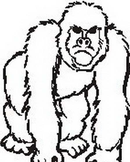 Scimmia da colorare 37