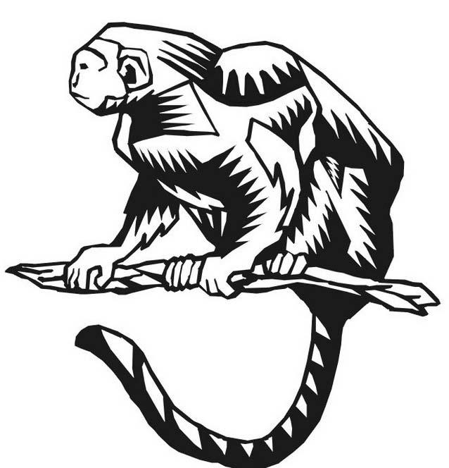 Scimmia da colorare 51