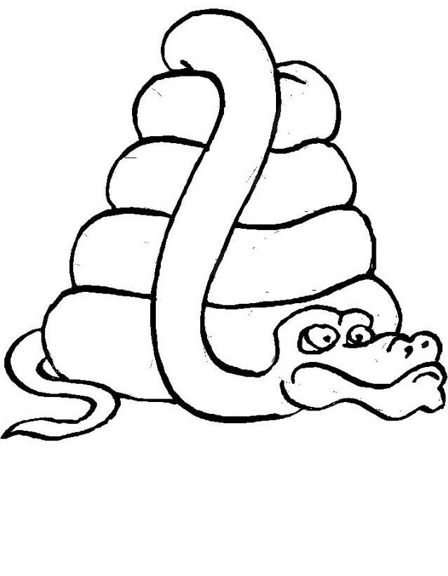Serpente da colorare 67
