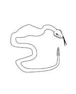 Serpente da colorare 68