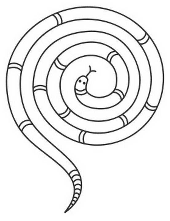 Serpente da colorare 82