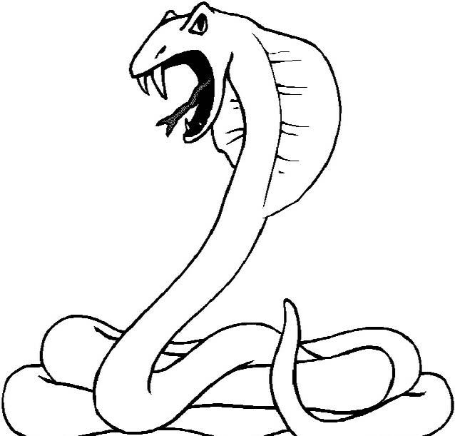 Serpente da colorare 86