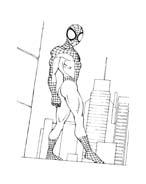 Spiderman da colorare 102