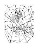 Spiderman da colorare 105