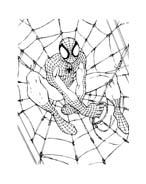 Spiderman da colorare 105