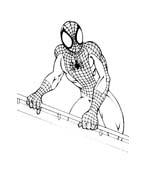 Spiderman da colorare 107