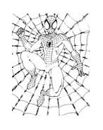 Spiderman da colorare 112