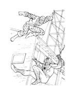 Spiderman da colorare 116