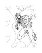 Spiderman da colorare 132
