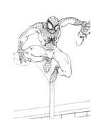 Spiderman da colorare 136