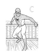 Spiderman da colorare 145