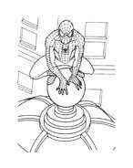 Spiderman da colorare 148