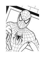 Spiderman da colorare 151