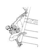 Spiderman da colorare 156