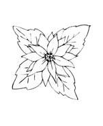 Fiore da colorare 359