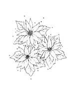 Fiore da colorare 360
