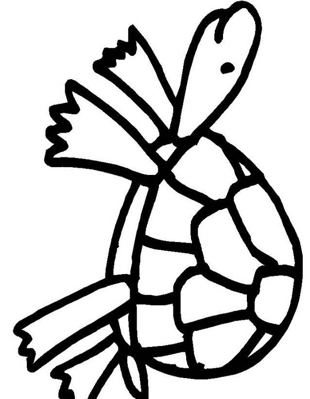 Tartaruga da colorare 31