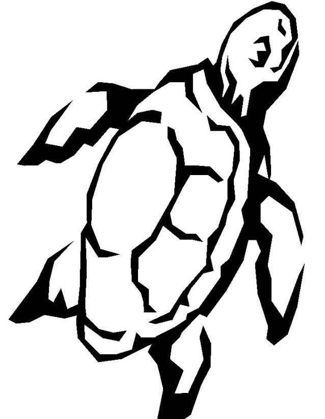 Tartaruga da colorare 35