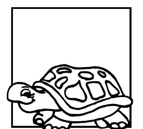 Tartaruga da colorare 45