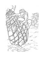 Tarzan da colorare 9