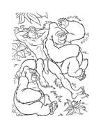 Tarzan da colorare 46