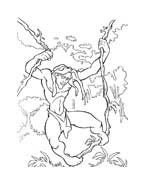 Tarzan da colorare 50