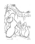 Tarzan da colorare 54