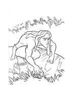 Tarzan da colorare 63