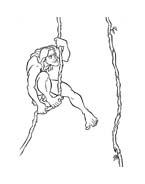 Tarzan da colorare 84