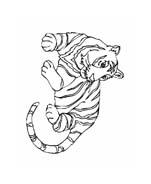 Tigre da colorare 54