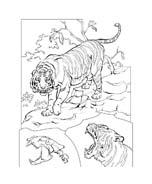 Tigre da colorare 55