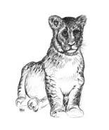 Tigre da colorare 63
