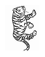 Tigre da colorare 78