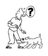 Le avventure di Tintin da colorare 8