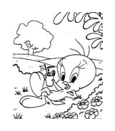 Titti e il gatto Silvestro da colorare