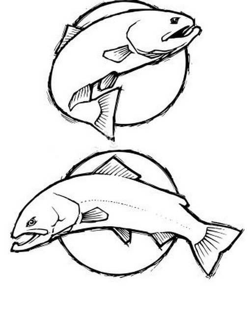 Pesce da colorare 242