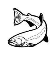 Pesce da colorare 243