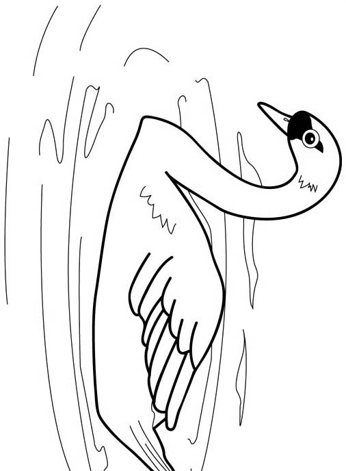 Uccello da colorare 232