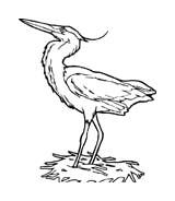 Uccello da colorare 235