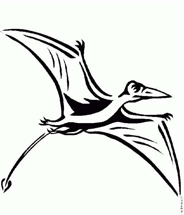 Uccello da colorare 236