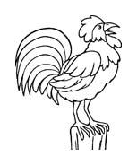 Uccello da colorare 239