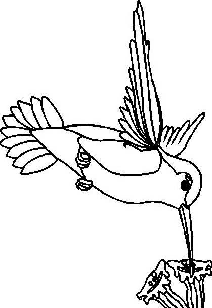 Uccello da colorare 244